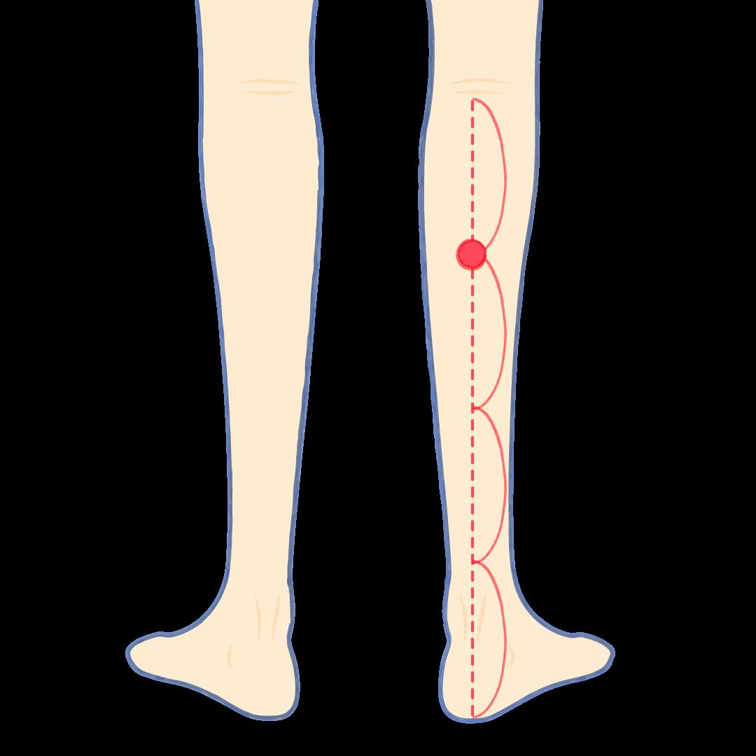 腰痛 妊娠 初期 妊娠初期に起こる腰痛を改善する3つの方法